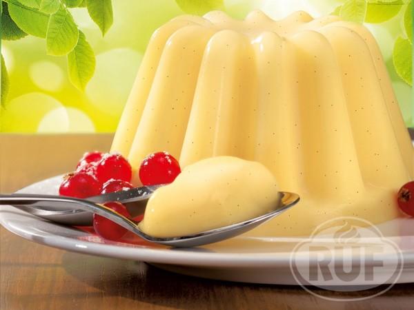 Pudding Bio Vanille 2er Pack 2x40g