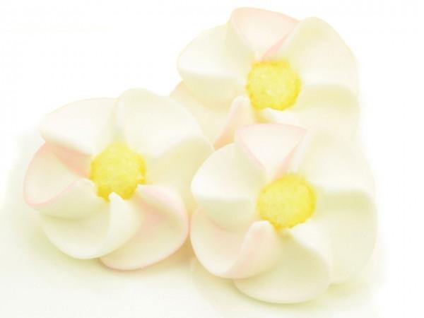 Zuckerdekor Apfelblüten weiß-rosa 9 Stk