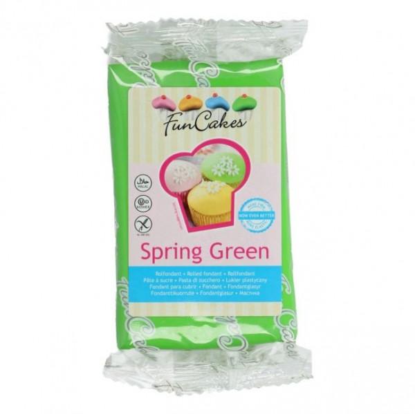 FunCakes Rollfondant Spring Green 250gr