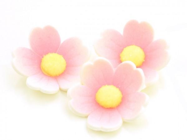 Zuckerdekor Blumen rosa 6 Stk 40mm