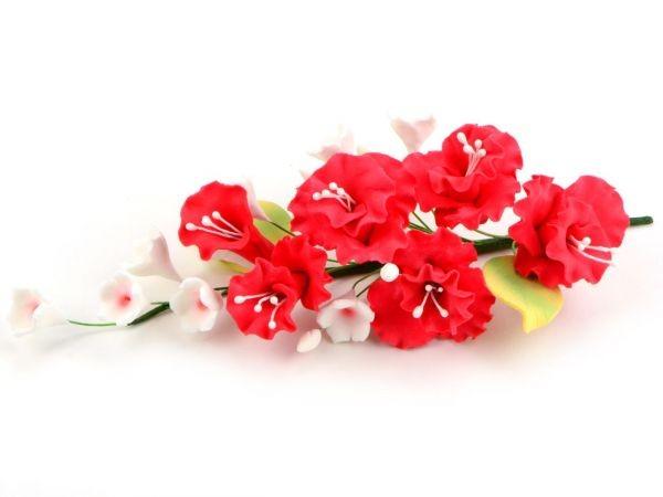 Zuckerblüte Blumenbouquet Pfingstrose