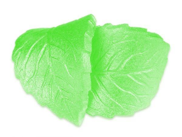 Pearl-Spray Grün 100ml