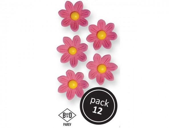 Zuckerblumen Gänseblümchen pink 12 Stk 24mm