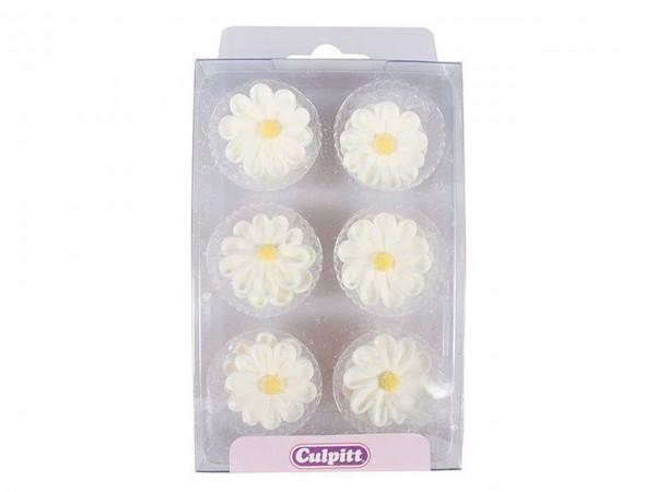 Zuckerblumen Gänseblümchen weiß 12tlg