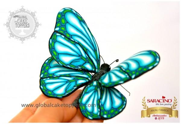 Schmetterling modellieren mit Anjali Tambde